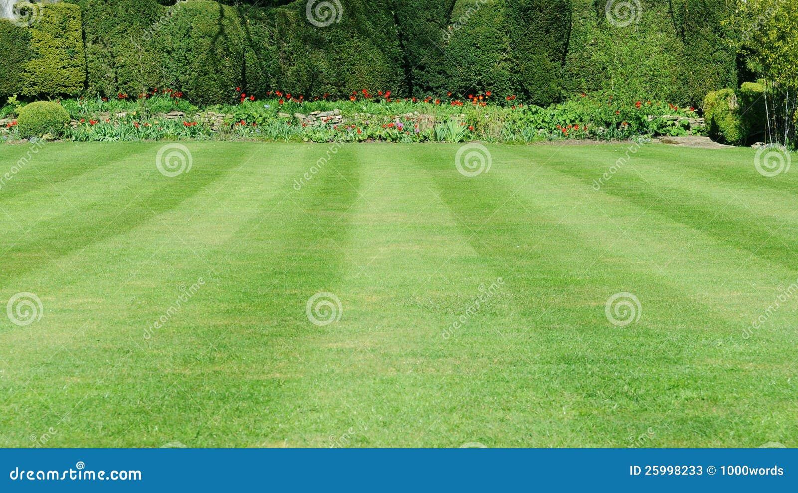 Garten rasen stockbild bild von eingang busch for Garten rasen