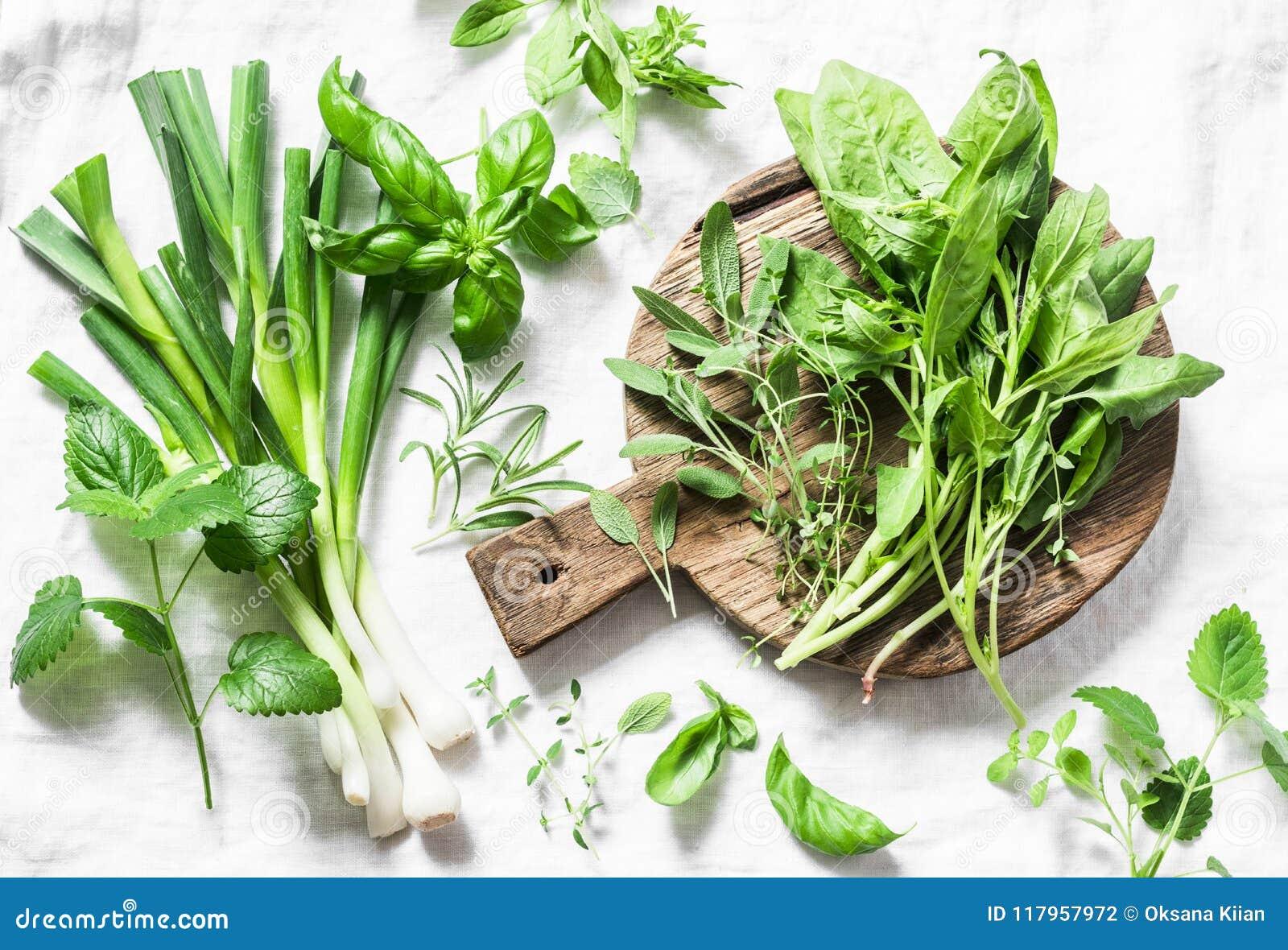 Gartenkräuter - Spinat, Basilikum, Thymian, Rosmarin, Salbei, Minze, Zwiebel, Knoblauch auf einem hellen Hintergrund, Draufsicht