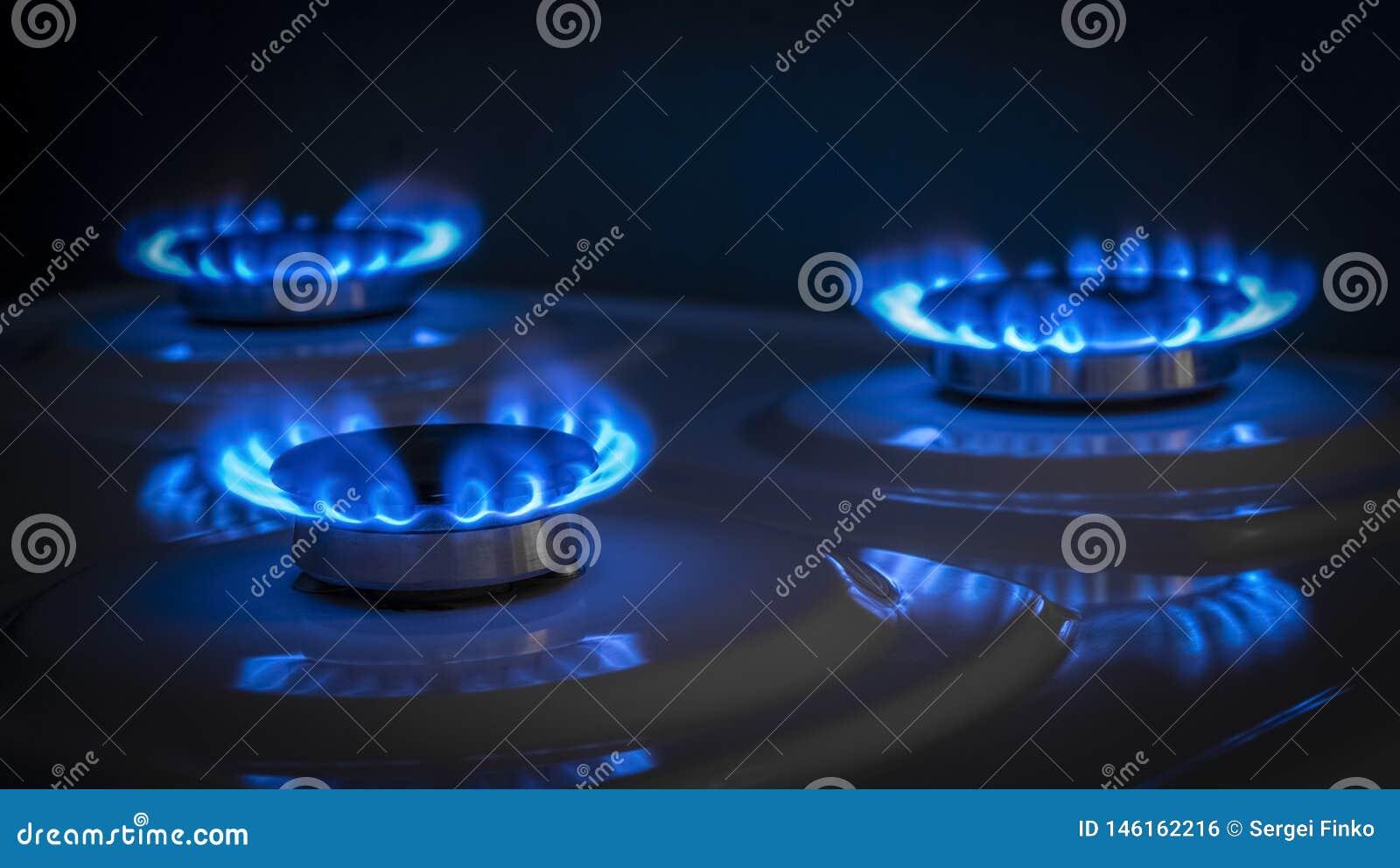 Gas burner stove
