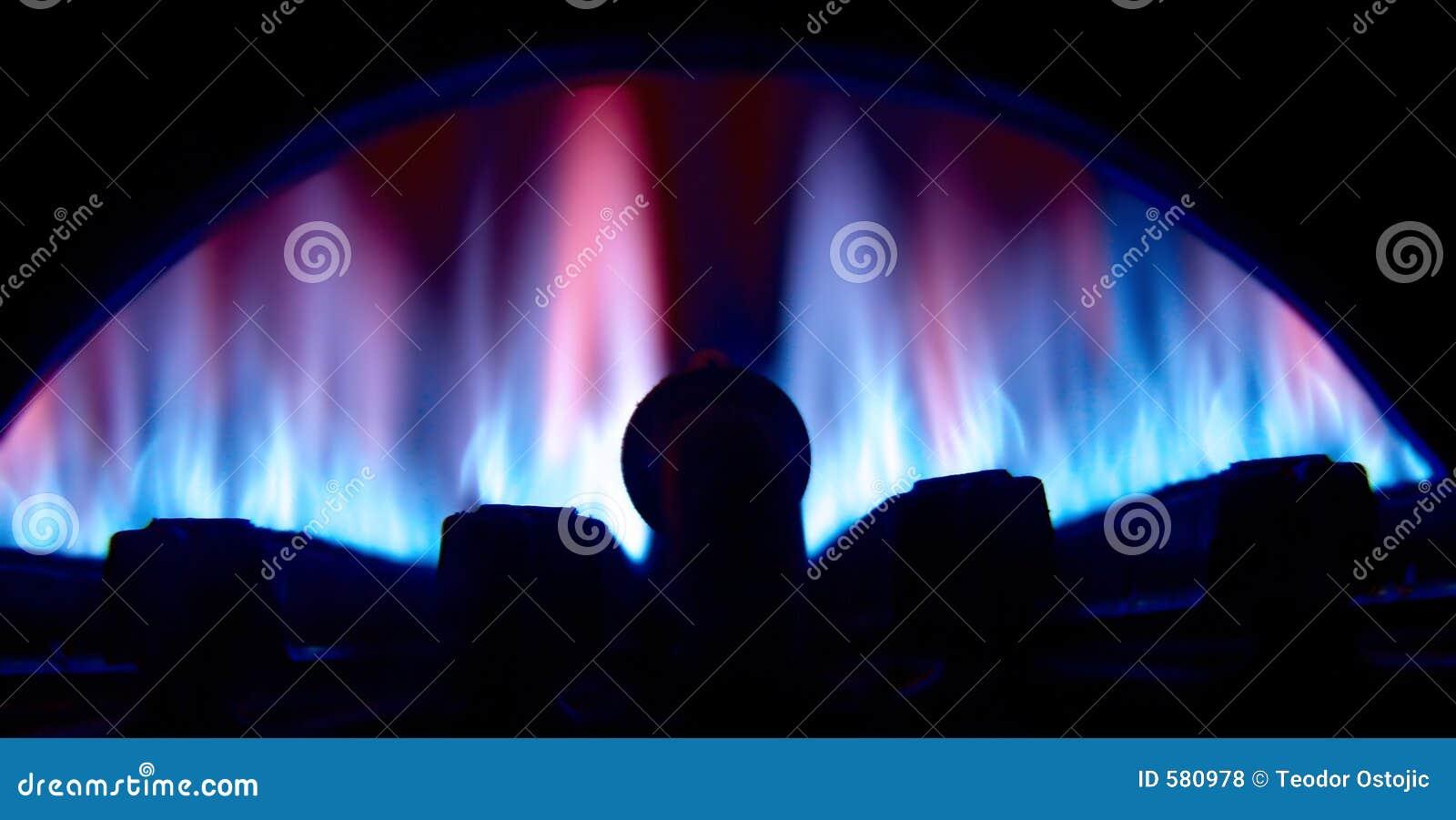 Gas burrner