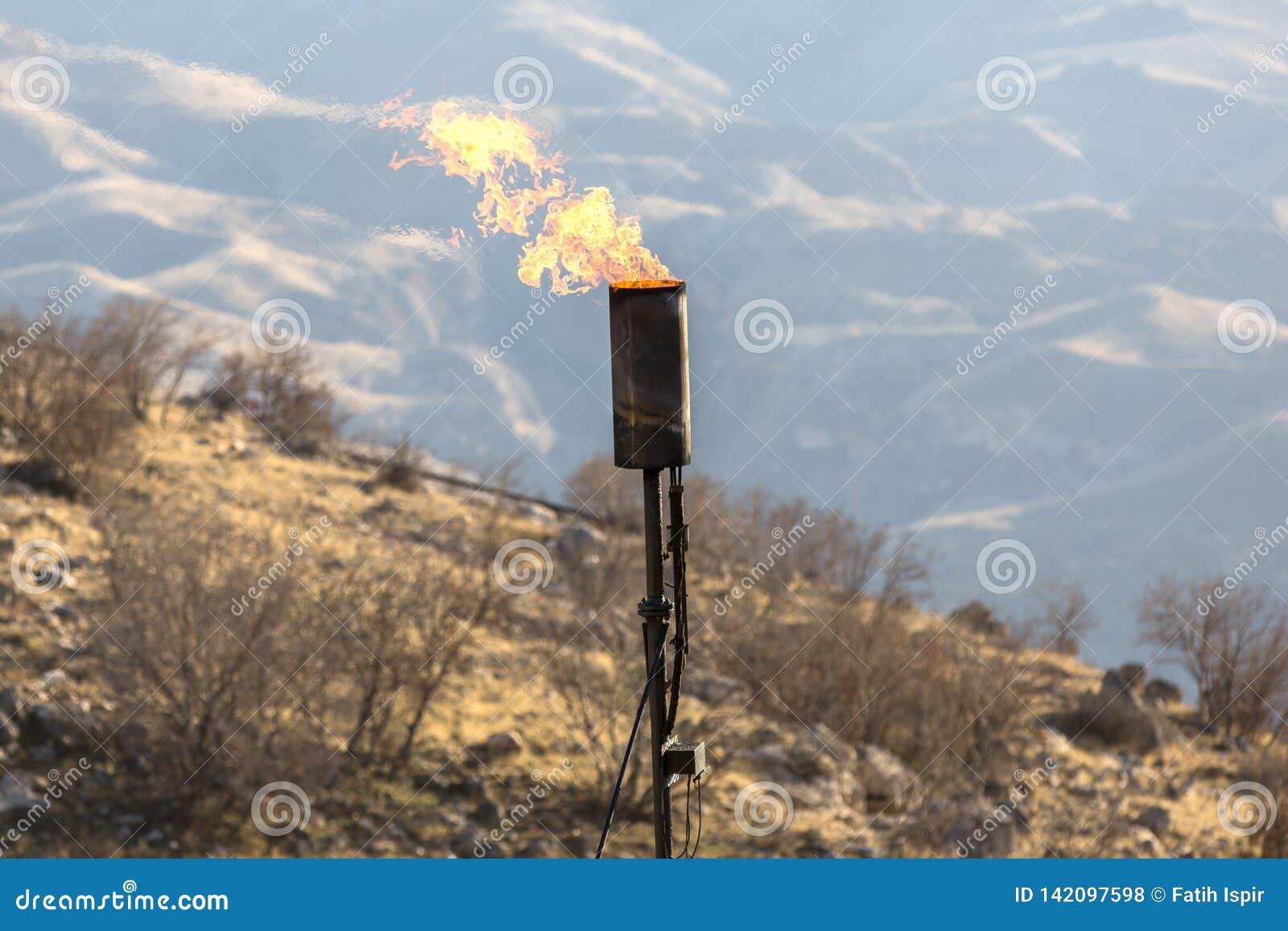 Gasbränninglampglas
