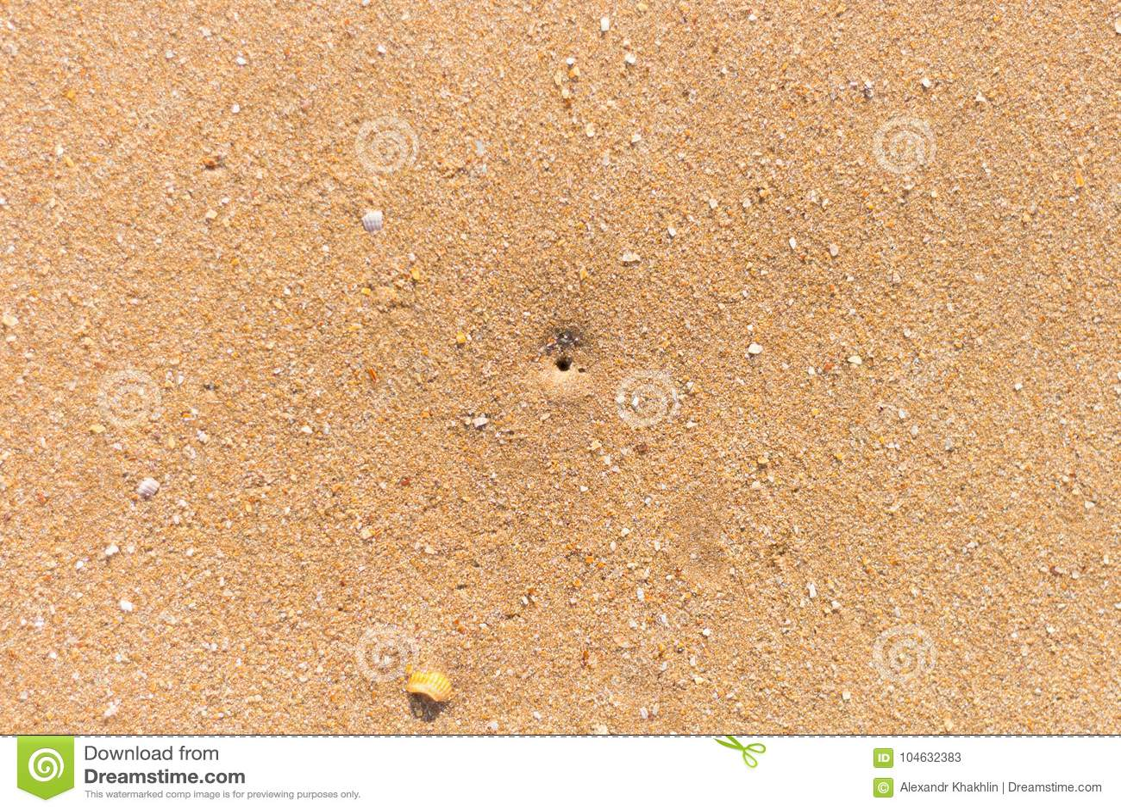 Download Gat op het zandstrand stock afbeelding. Afbeelding bestaande uit sleep - 104632383