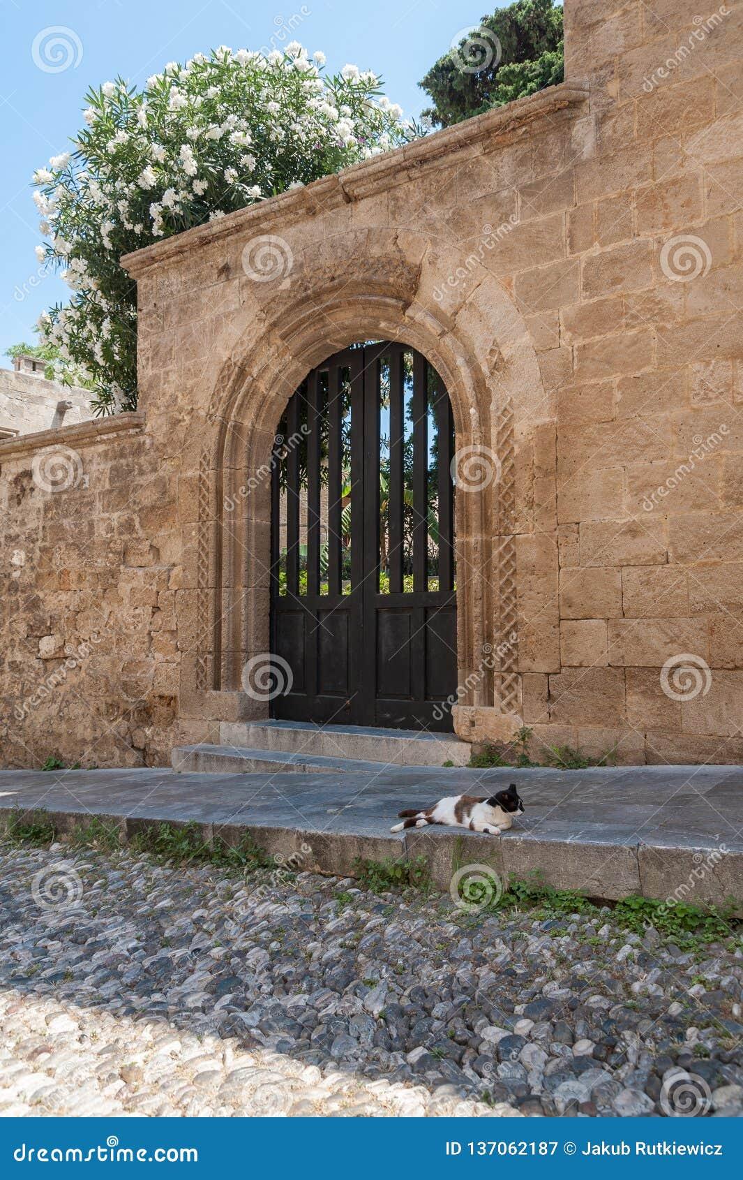 Gatan av riddarna Vara slö katten Rhodes gammal stad, ö av Rhodes, Grekland, Europa