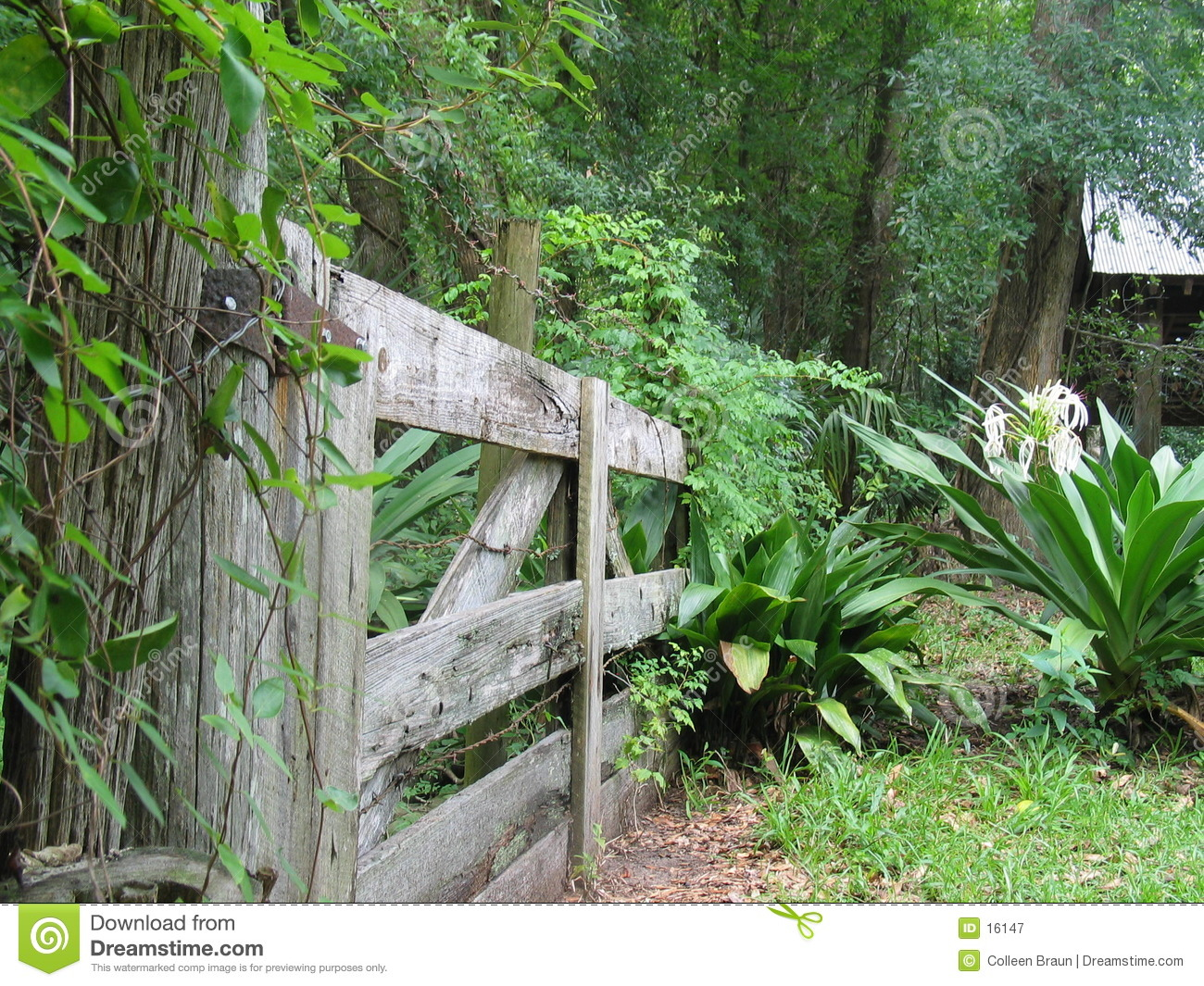 Gateway to the garden royalty free stock photography for Garden gateway