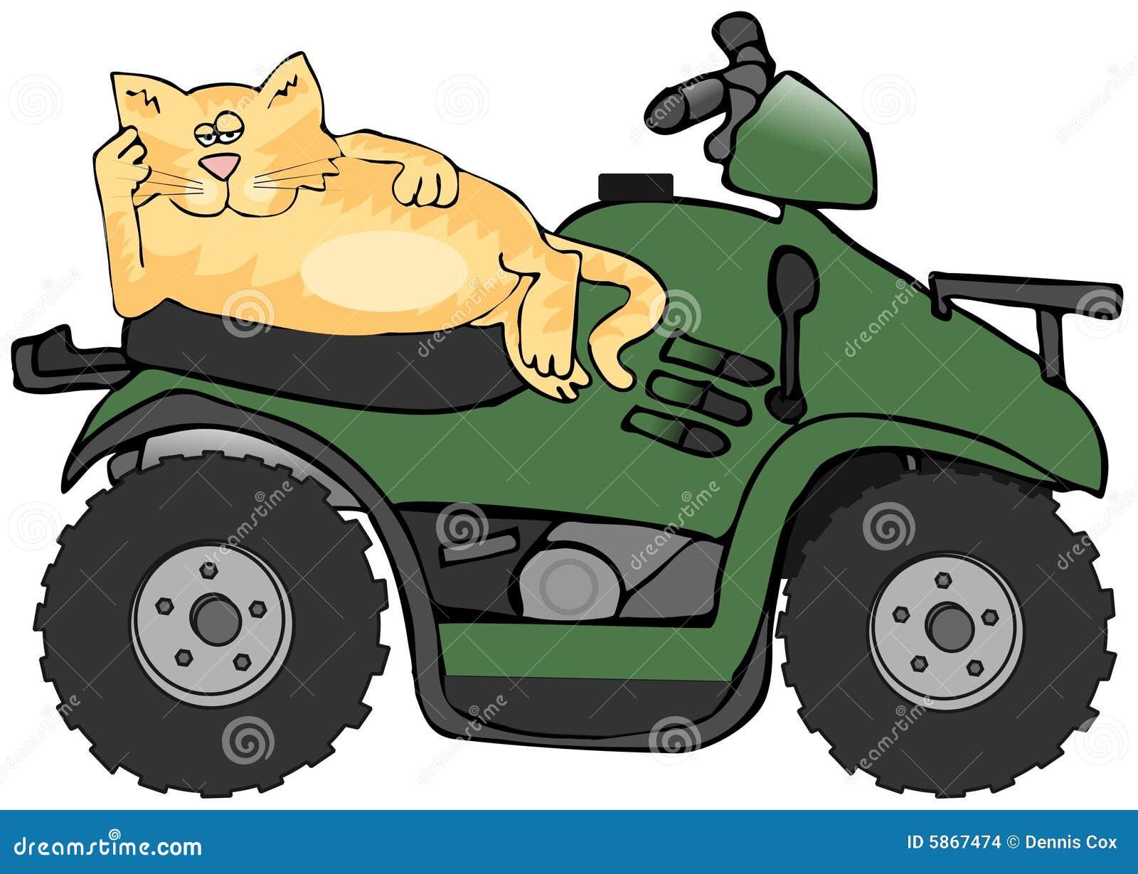 Gato de ATV