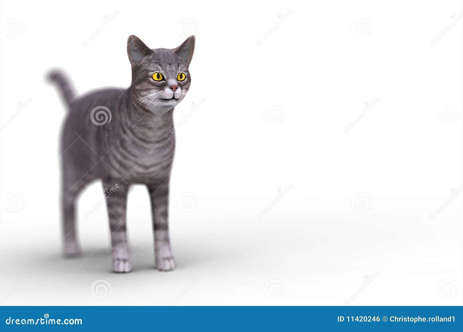 Gato do cinza 3d