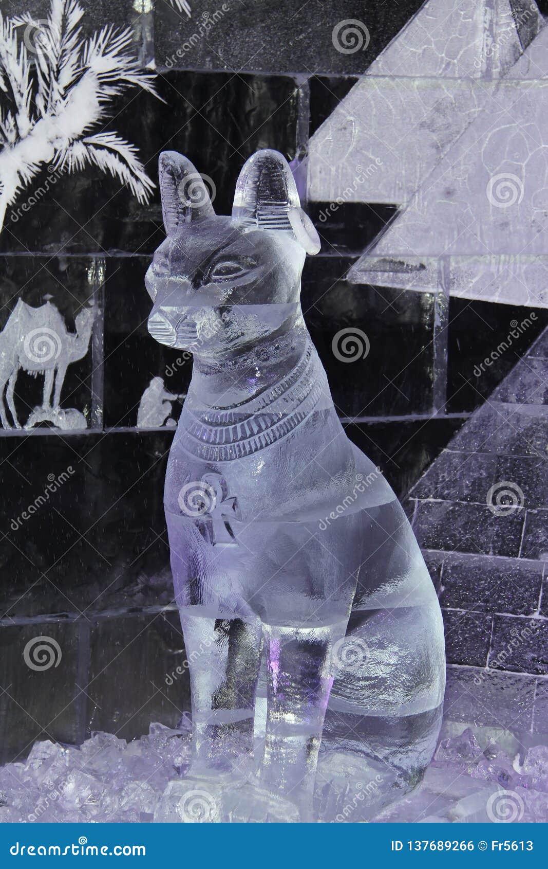Gato egípcio sagrado do gelo