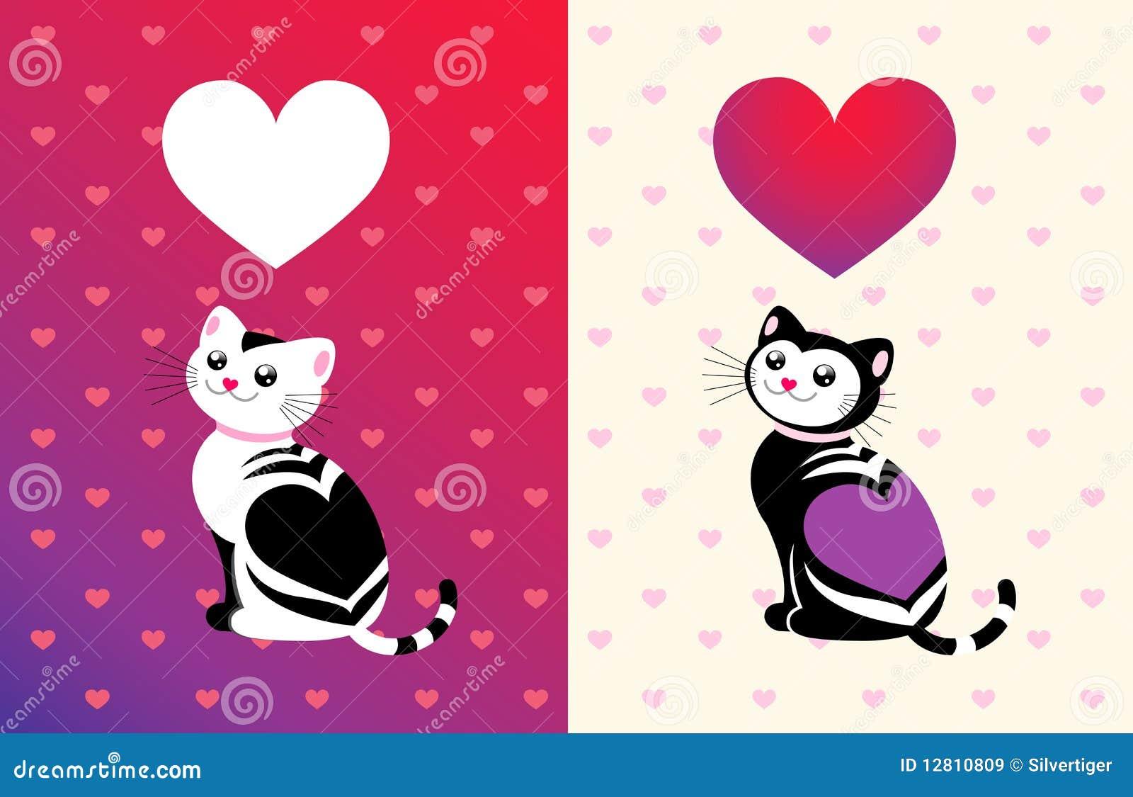Gato engraçado com um coração