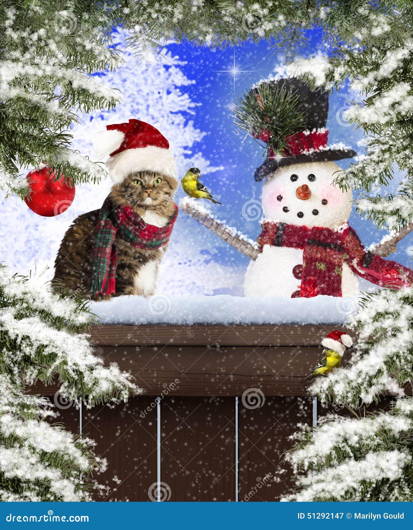 Gato y muñeco de nieve de la Navidad