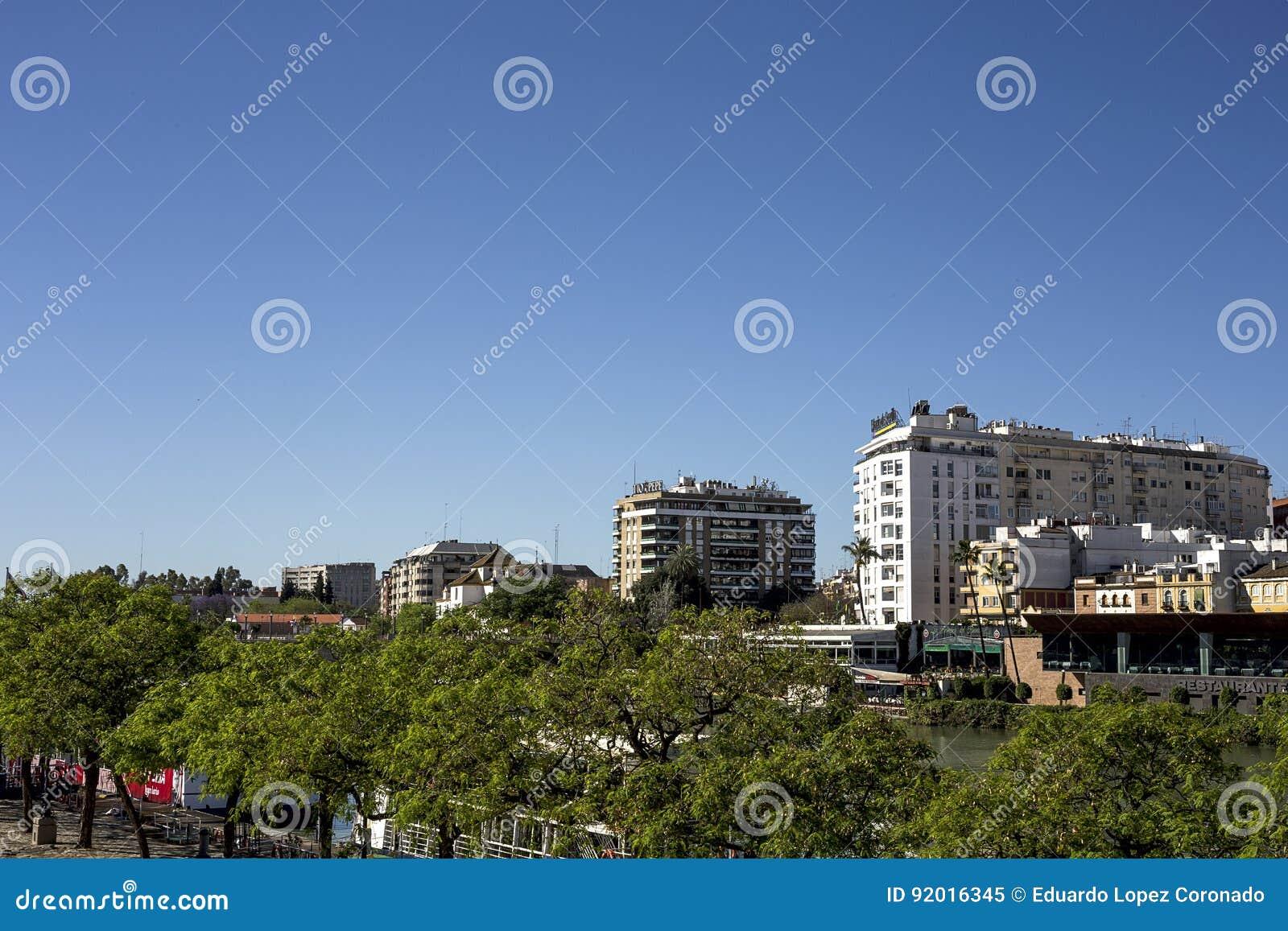 Gator och hörn av Seville _ spain
