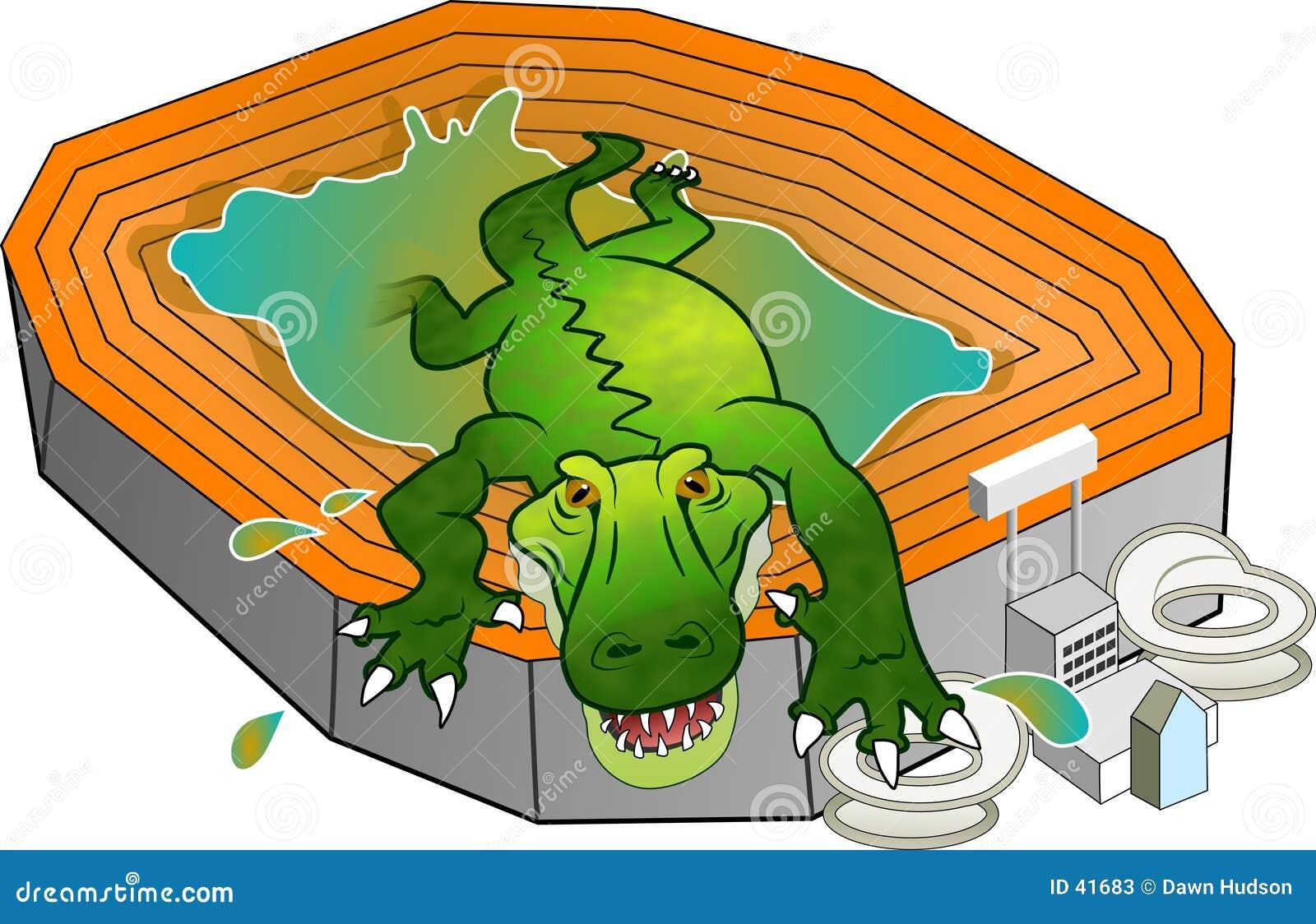 Gator stadionie