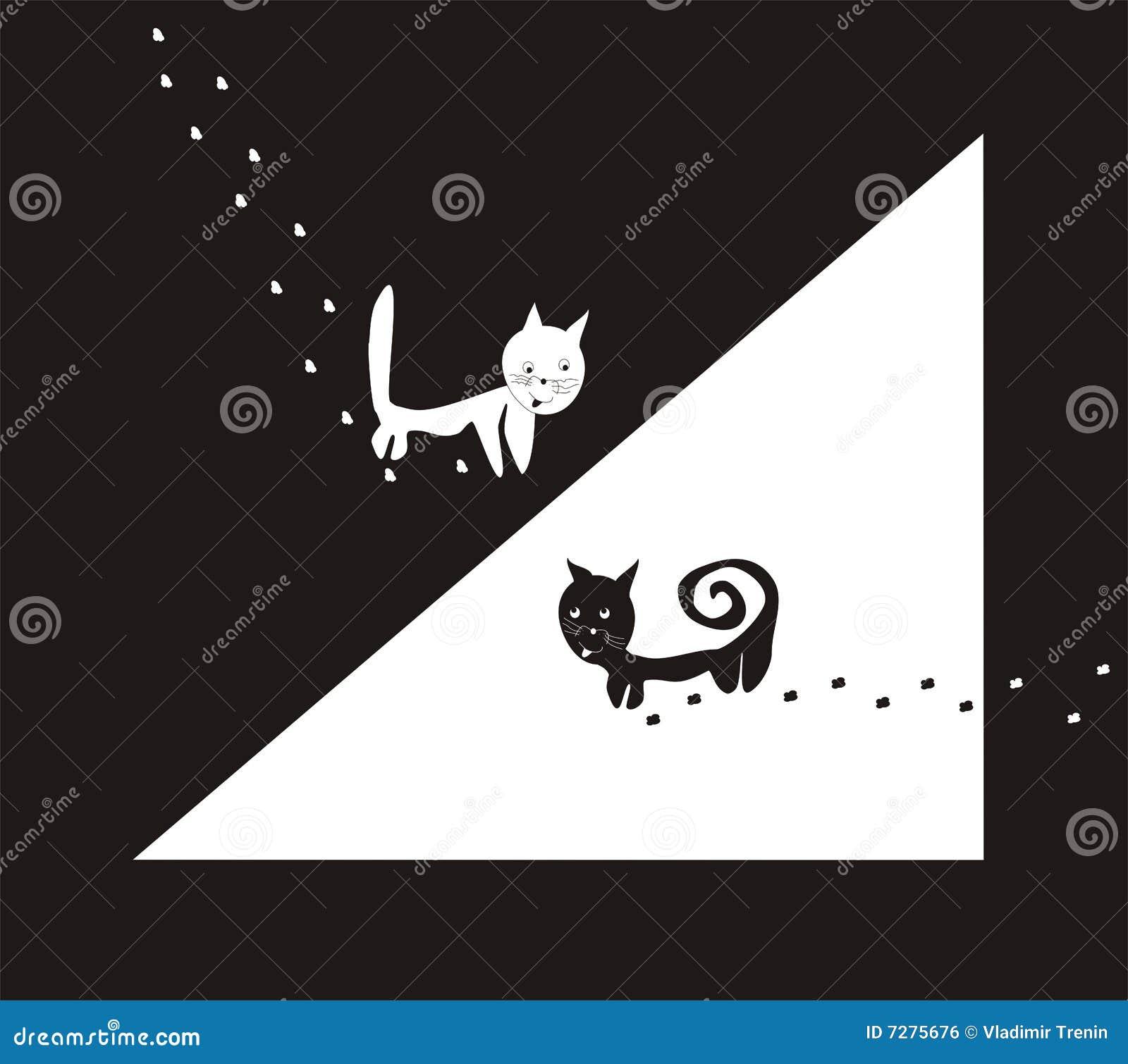 Gatos: blanco y negro
