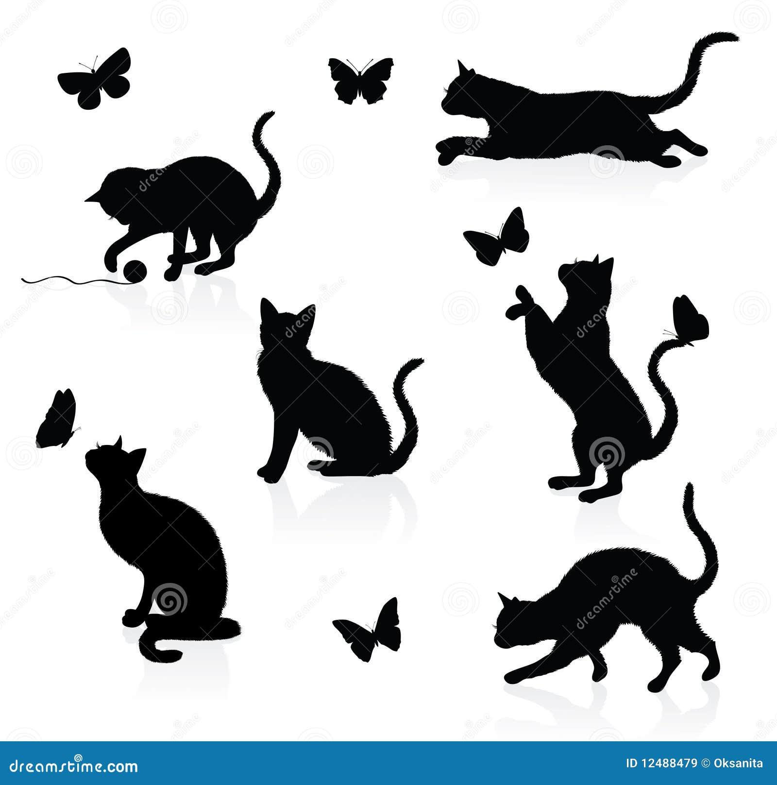 Gatos e borboletas.