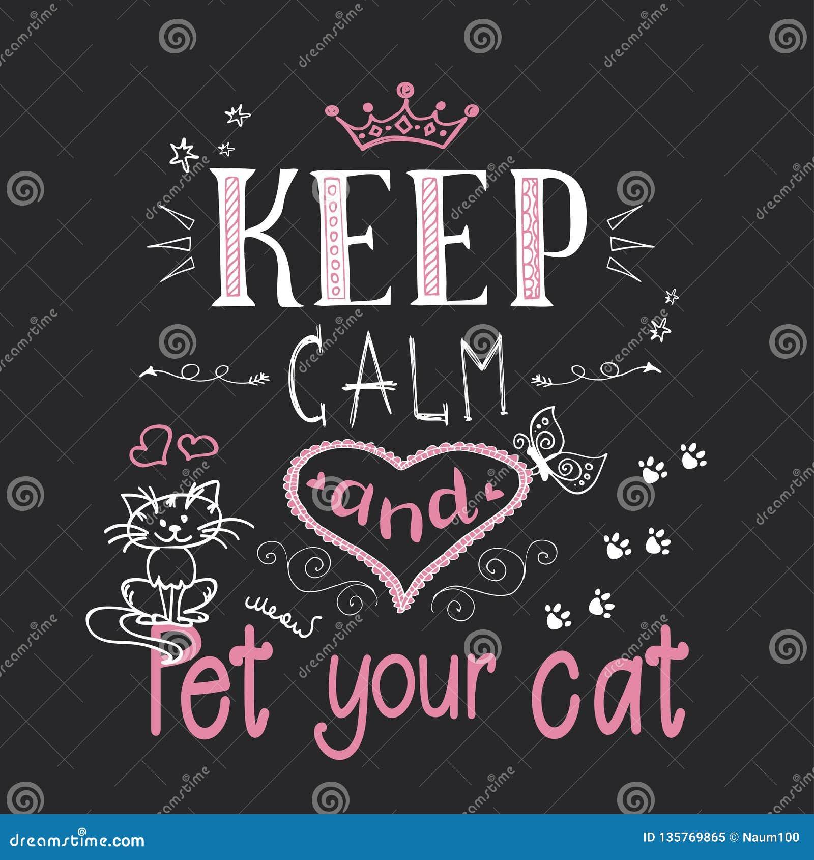 Gatos Engraçados E Frase Para Manter A Calma E O Animal De