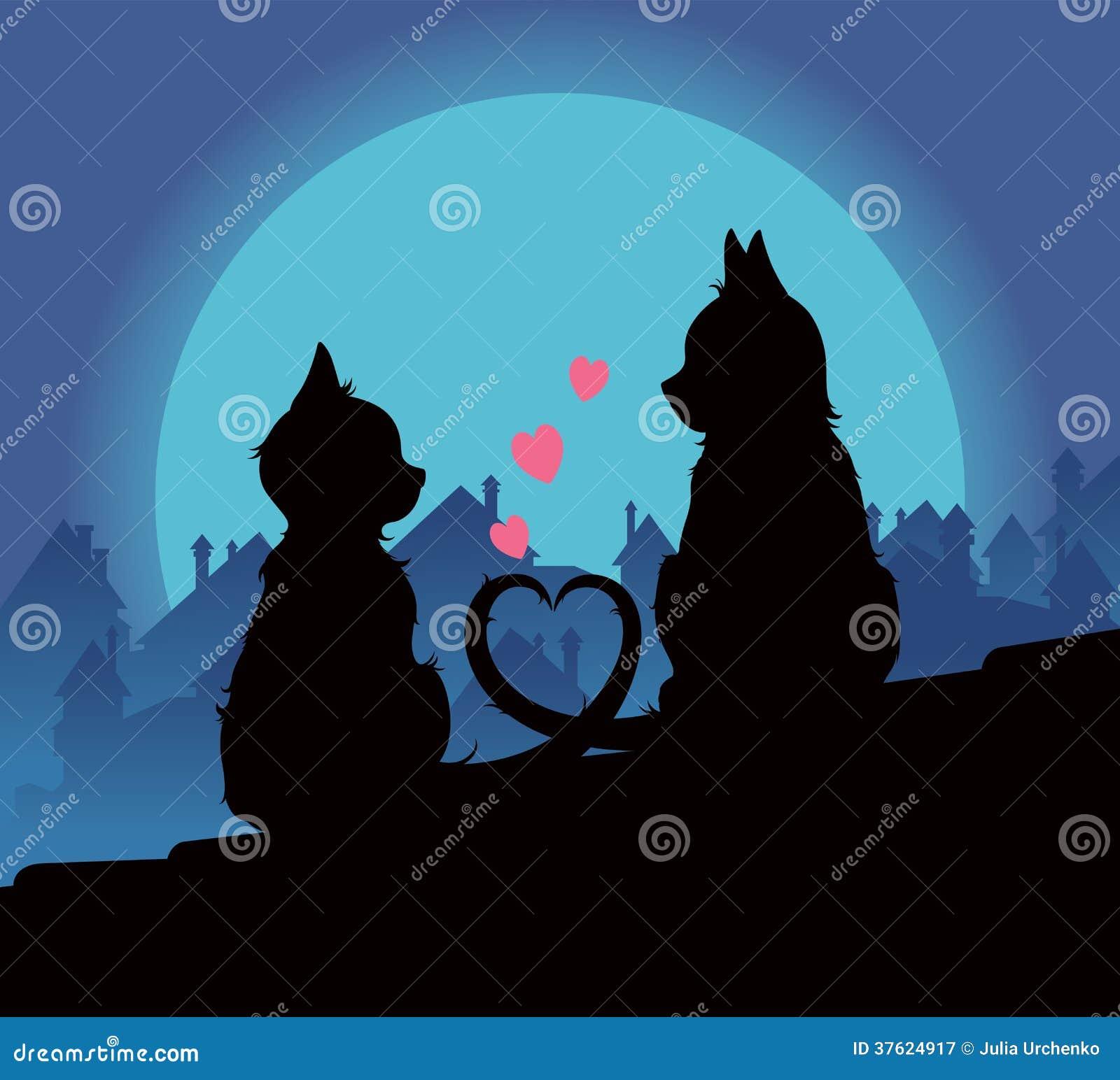 Gatti degli amanti