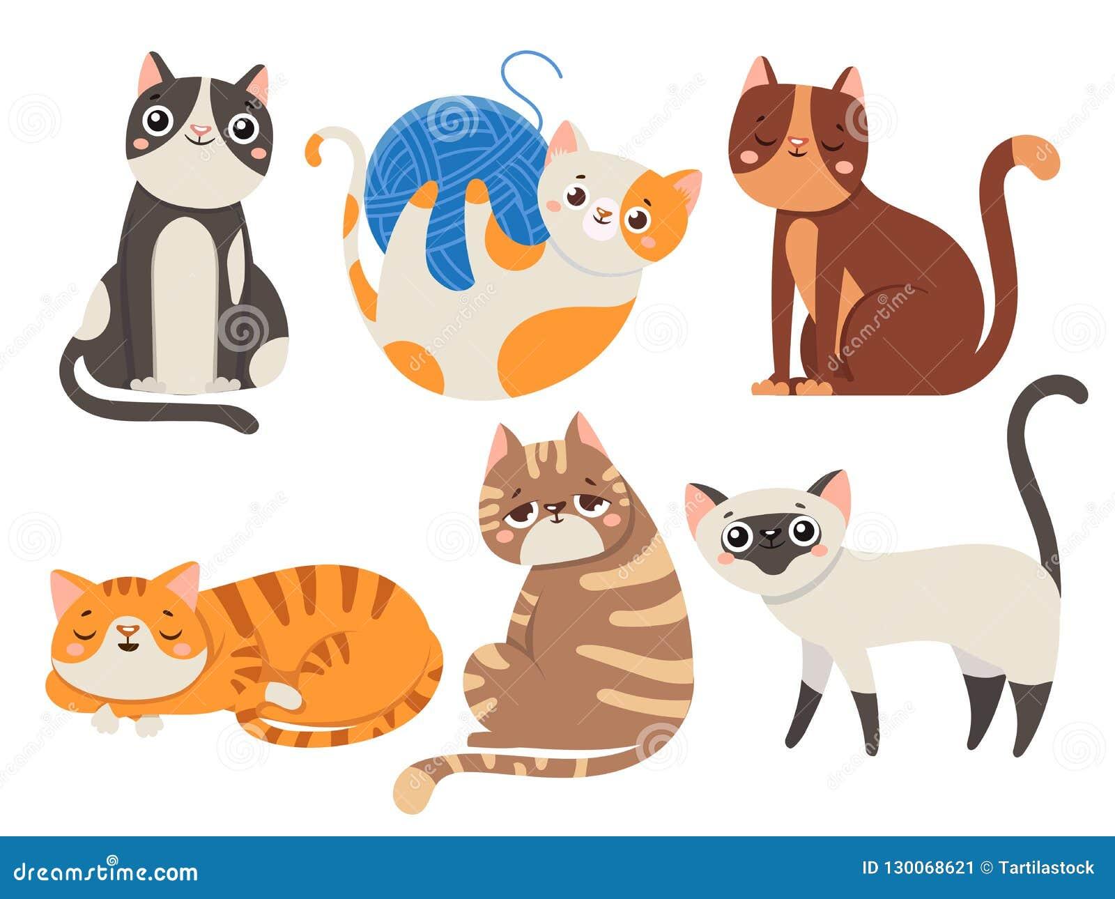 Gatti svegli Gatto lanuginoso, carattere di seduta del gattino o raccolta isolata dell illustrazione di vettore degli animali dom