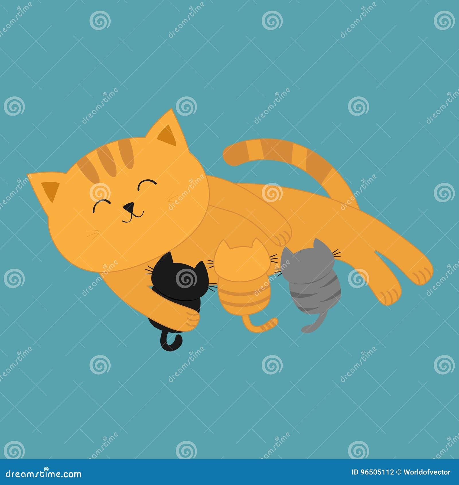 Gattini d alimentazione della madre del gatto Gattino della mamma che mette sul pavimento e che cura i piccoli gatti Alimentazion