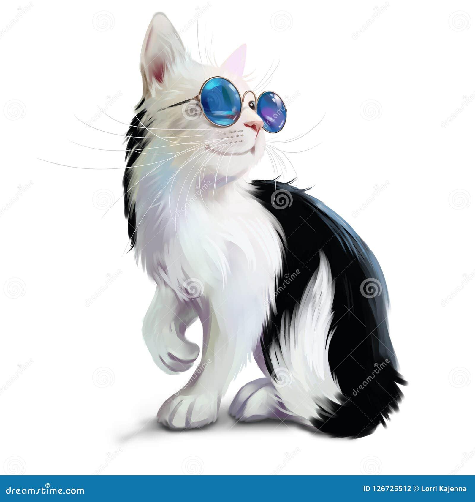 Gatto in bianco e nero con i vetri