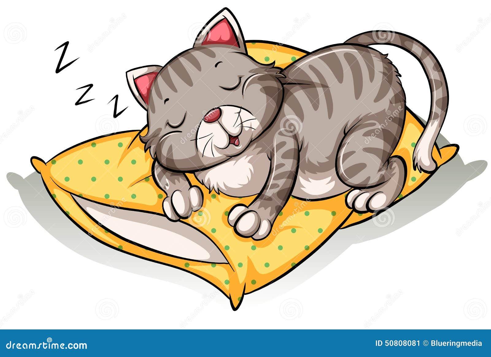 Gatto che dorme sopra il cuscino illustrazione vettoriale - Gatto disegno modello di gatto ...
