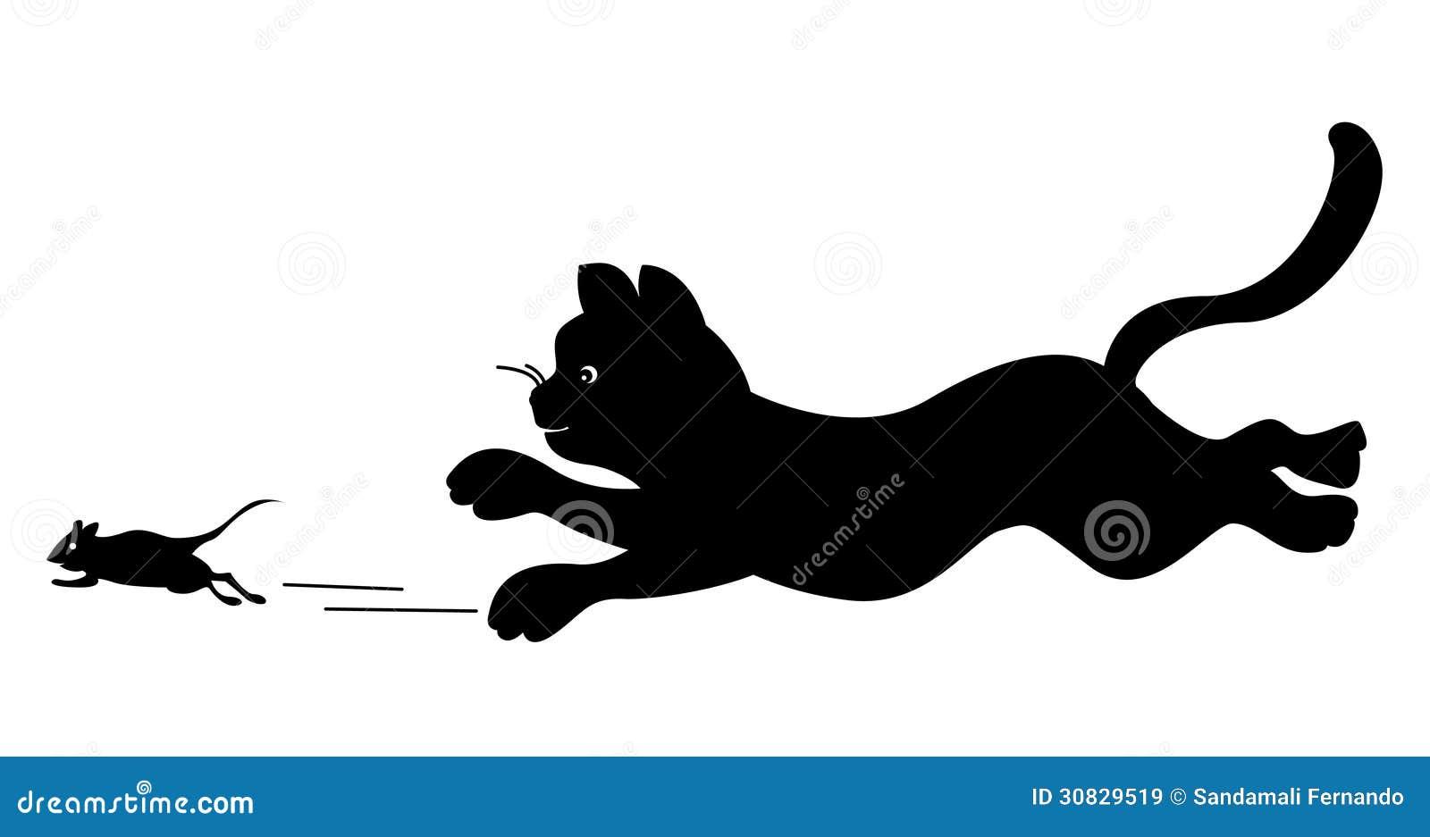 Gatto che insegue un topo
