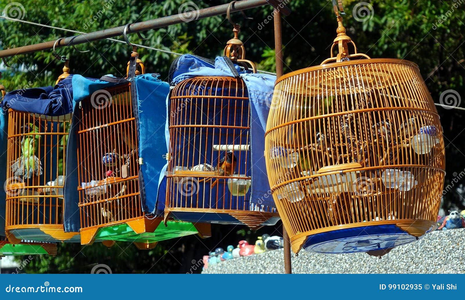 Gatuförsäljare Selling Songbirds