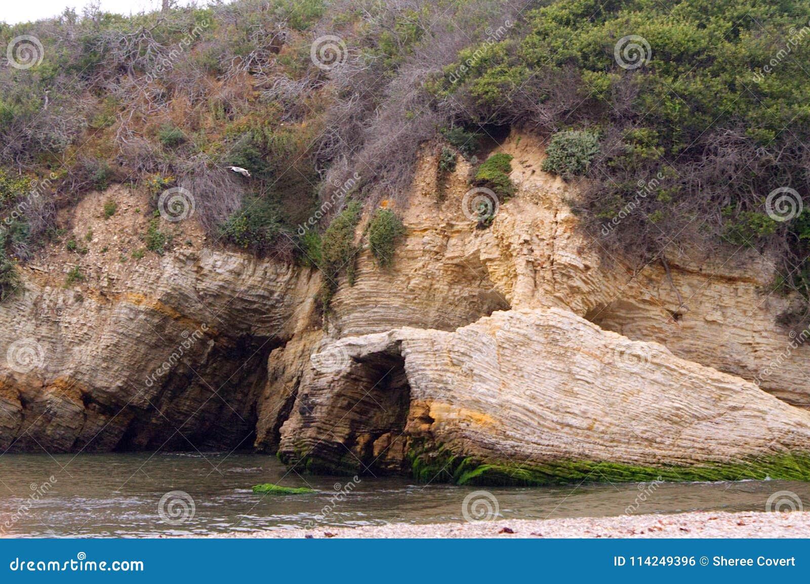 Gaviota, acantilados geológicos, playa, y océano
