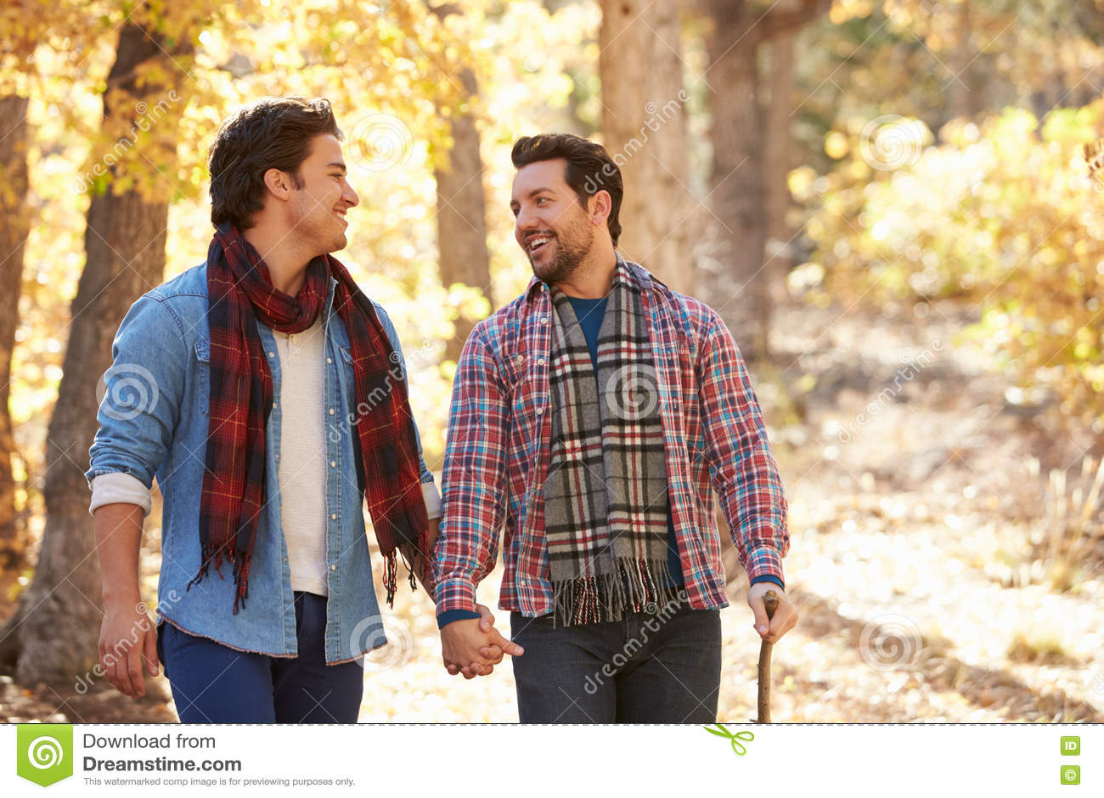 is hillary swank gay