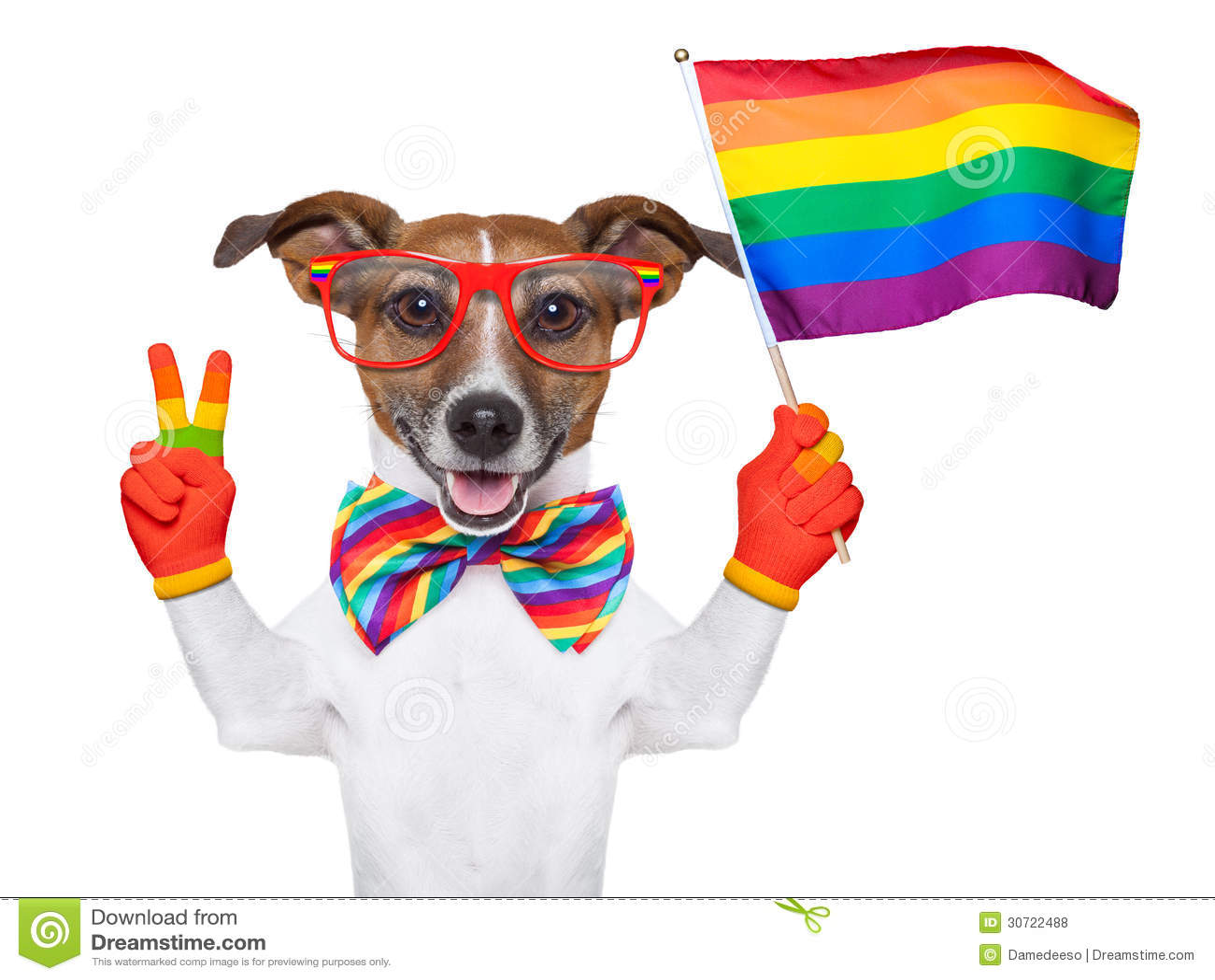 free pics gays