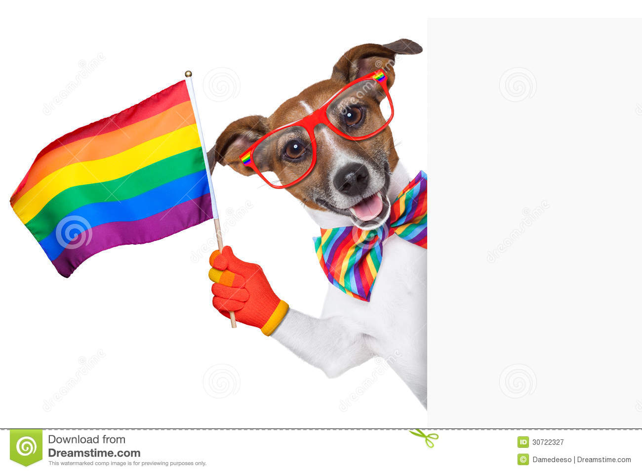 Happy gay pride stock photo. Image of peace, homosexuality -