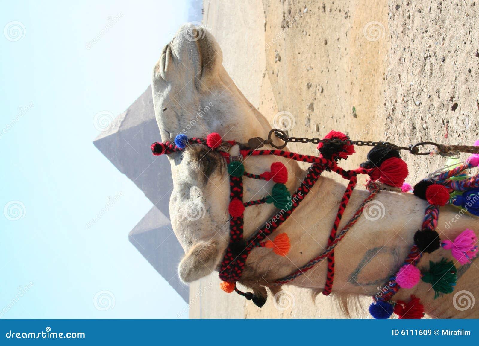 Gaza pyramider