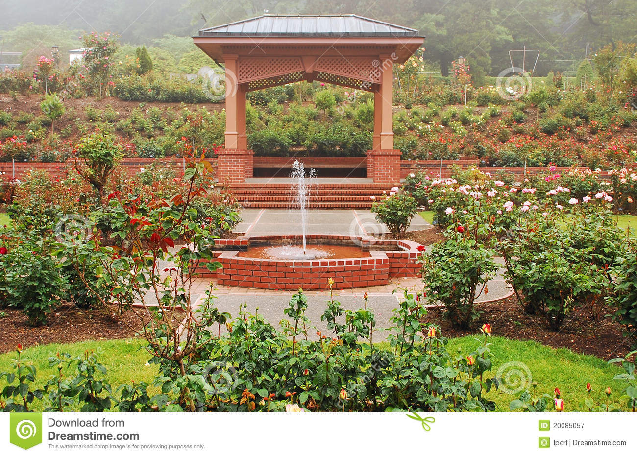 Gazebo Do Jardim De Rosas Fotografia de Stock Royalty Free ...