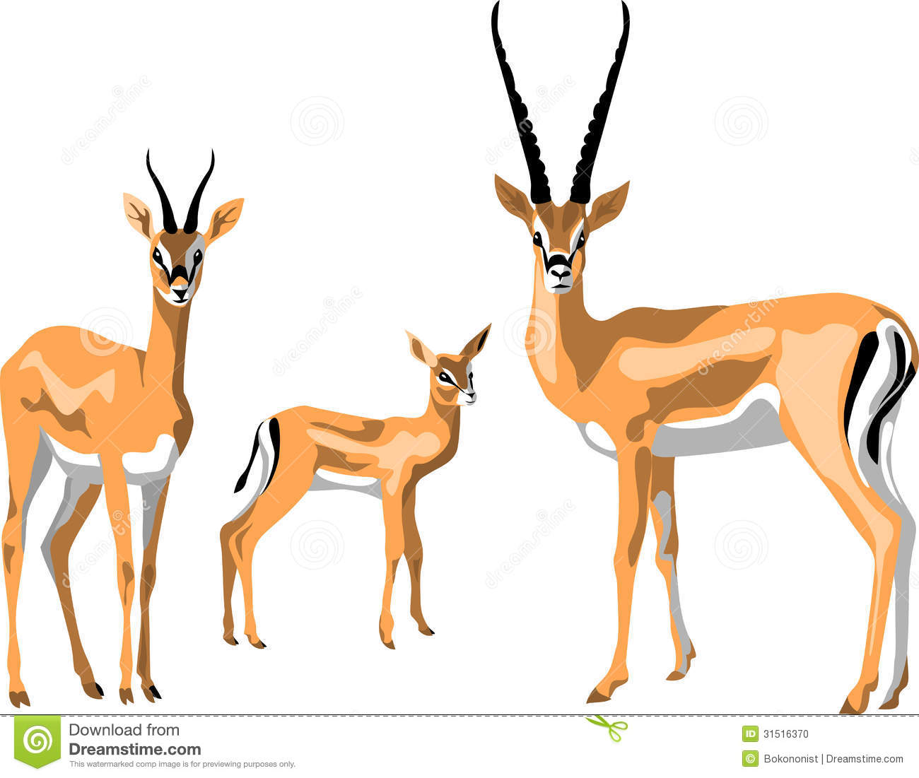 clipart springbok - photo #16