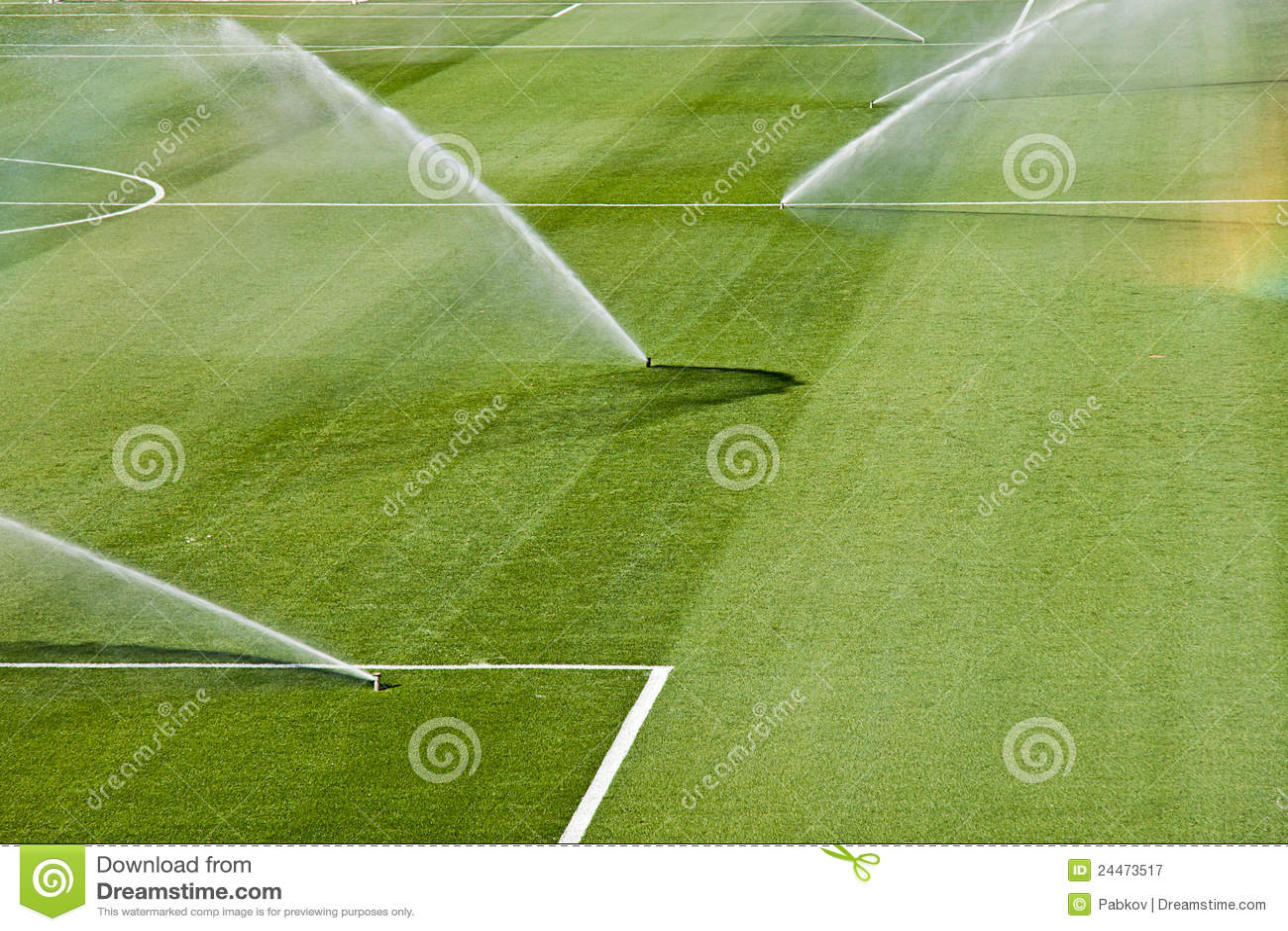 Gazon d irrigation