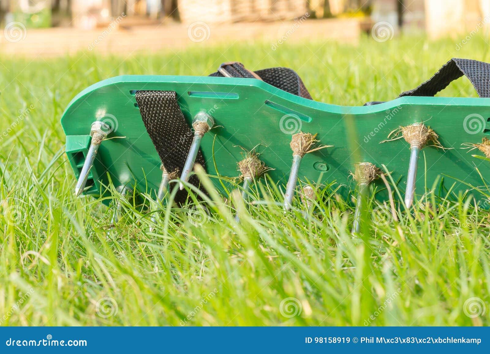 d49c7a686d9 Gazon die schoenen met metaalaren luchten Gebruikt om de kwaliteit van de  grasgroei te verbeteren Close-up van de groene schoen met zijn aren en  schroeven
