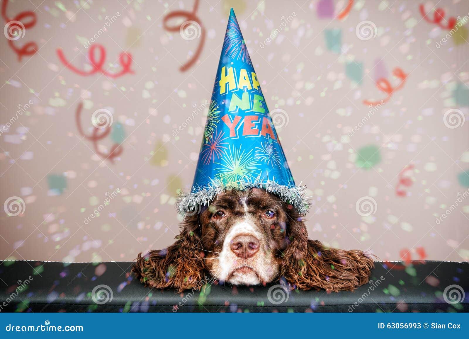 Gderliwy nowego roku pies