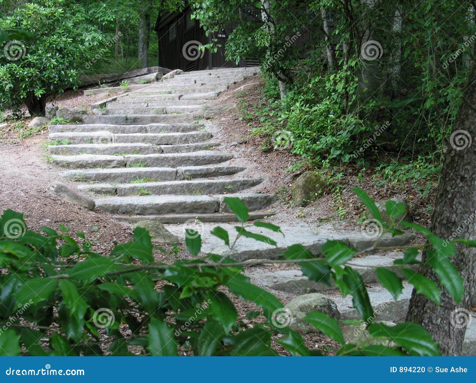 Gdzieś po schodach