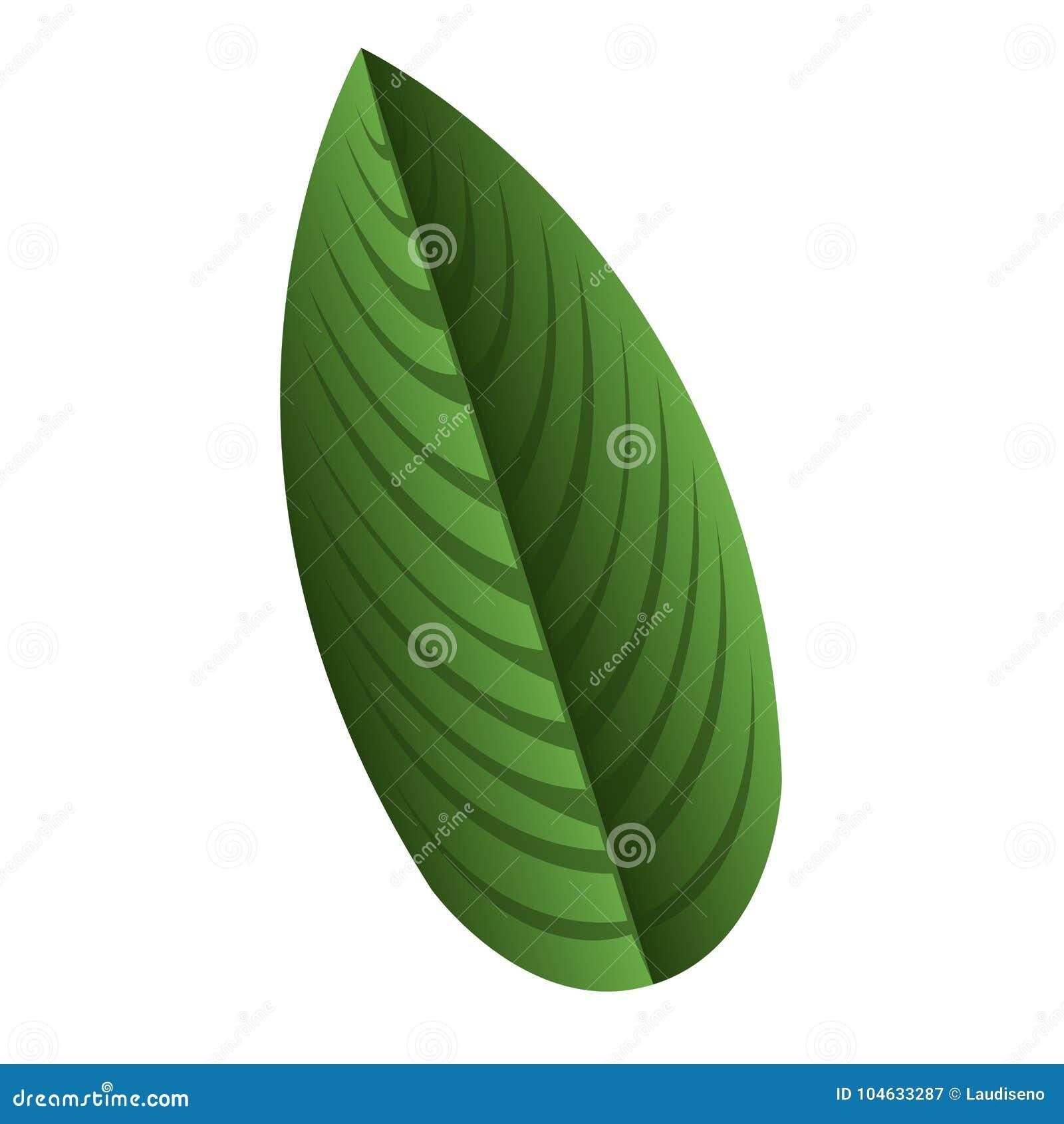 Download Geïsoleerd bladpictogram vector illustratie. Illustratie bestaande uit palm - 104633287