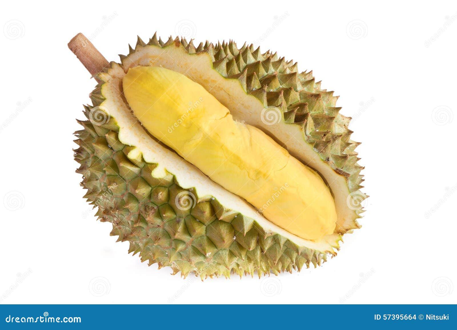 Geïsoleerd Durianfruit