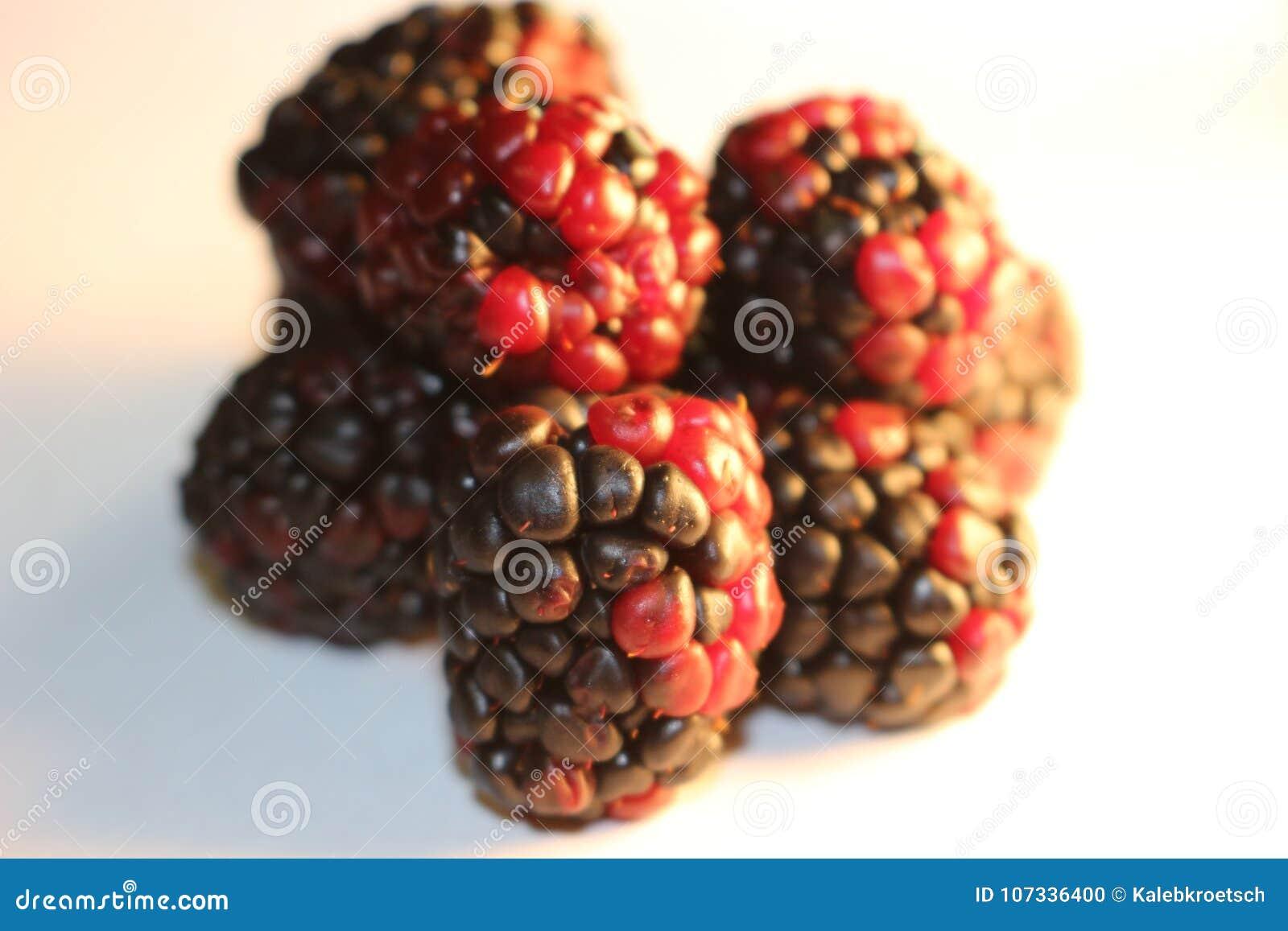 Geïsoleerde braambessen die sappig en rijp kijken De braambessen zijn van de Rubus-soort in de Rosaceae-familie