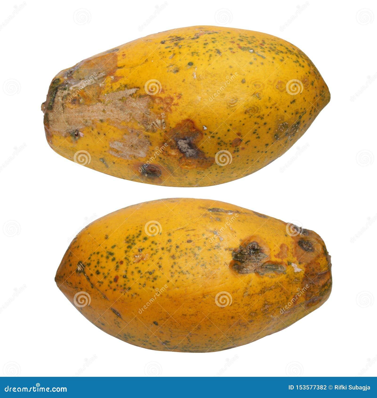 Geïsoleerde foto van papaja Sluit omhoog foto