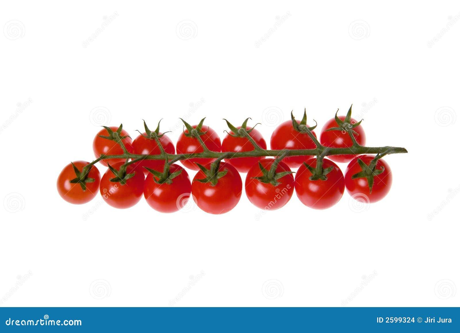 Geïsoleerdea de tomaten van de kers
