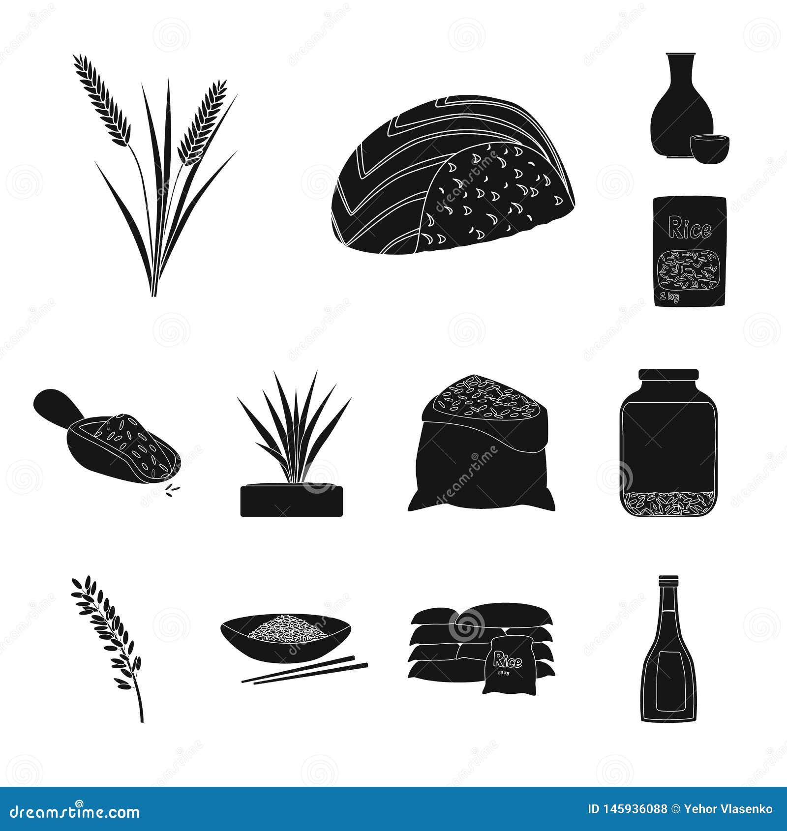 Ge?soleerd voorwerp van dieet en kokend symbool Inzameling van dieet en organische voorraad vectorillustratie