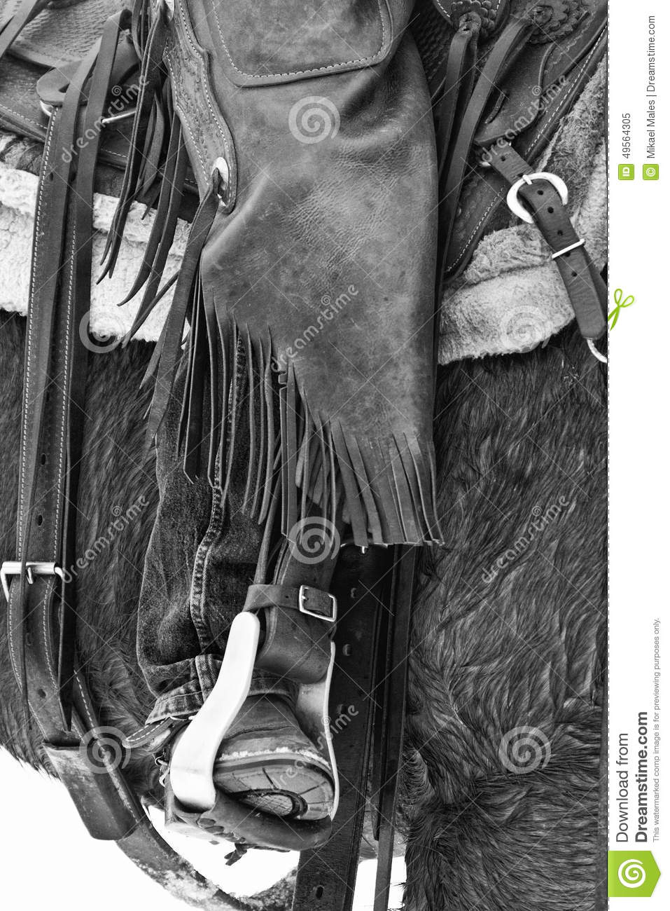 Gear Of A Cowboy Stock Image Image Of Cowboys Wild 49564305