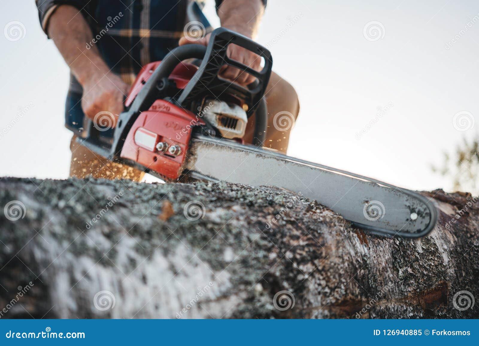Gebaarde sterke houthakker die de zagende boom van het plaidoverhemd met kettingzaag voor het werk aangaande zaagmolen dragen