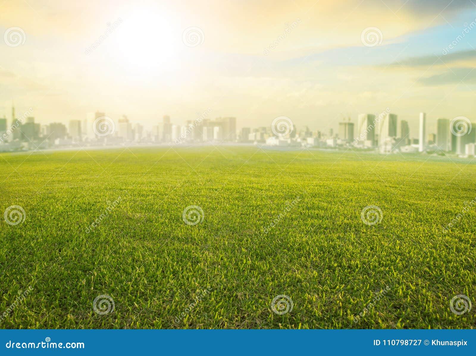 Gebied van het land scape wijd het groene gras en de moderne bouw van stedelijk s