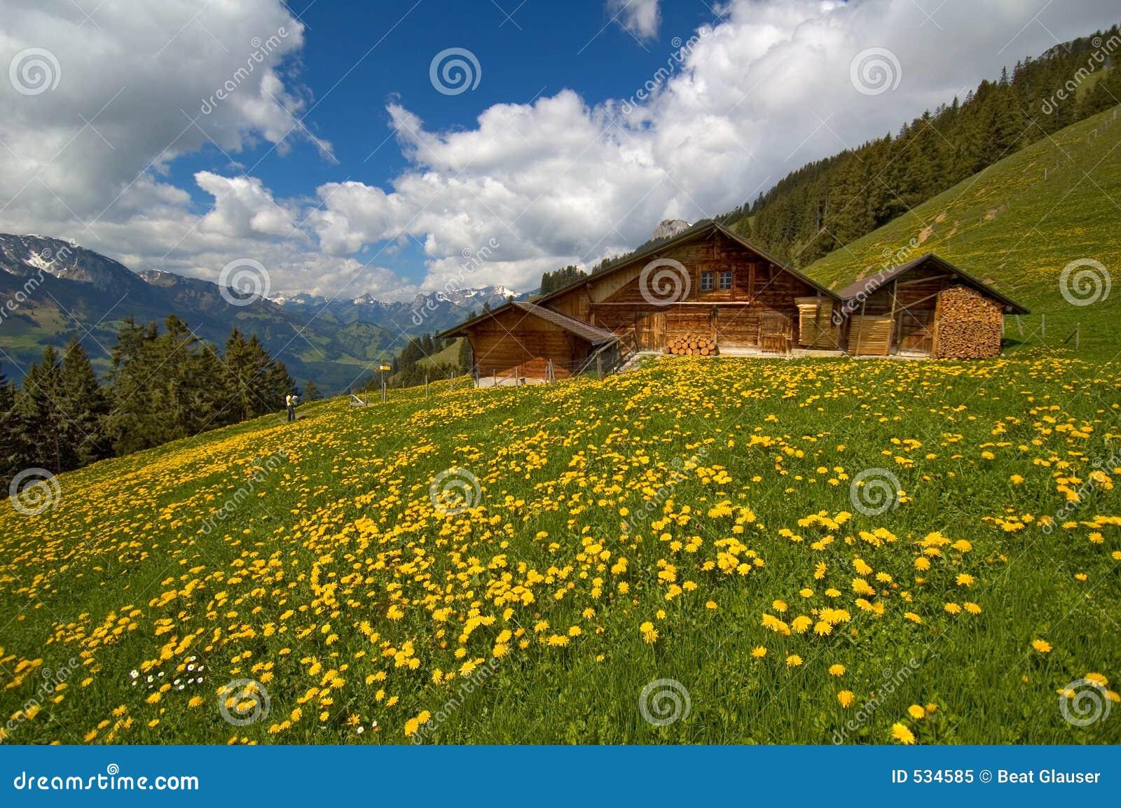 Gebirgshütte im Frühjahr