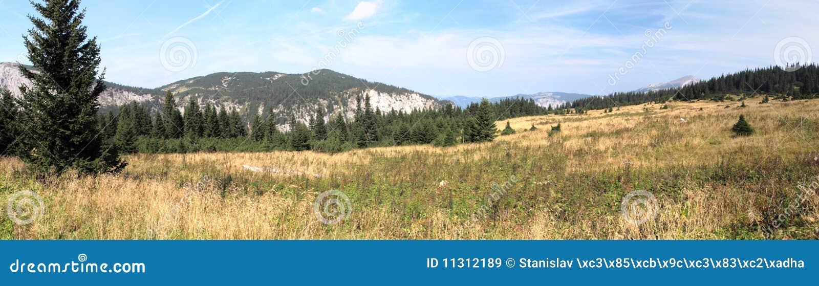 Gebirgswiese in den Rax Alpen