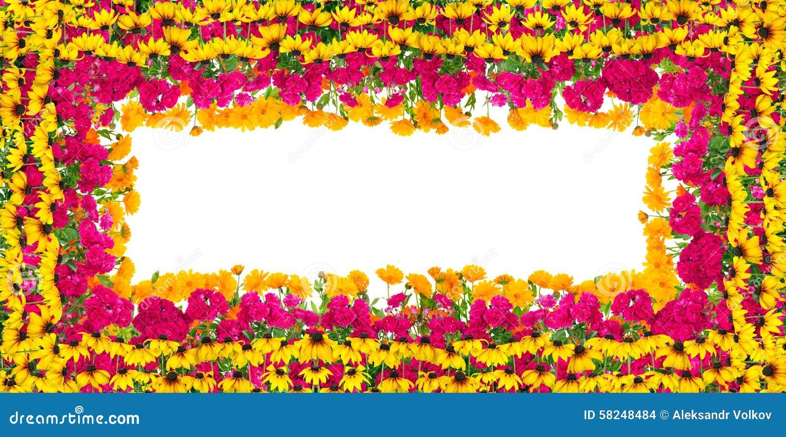 Geburtstag Bluht Rahmen Stockfoto Bild Von Blumen Dekorativ 58248484