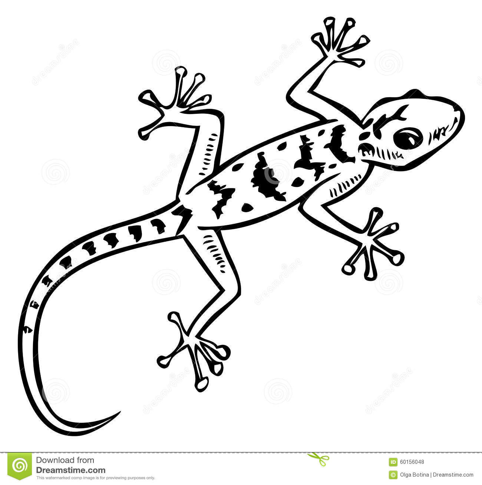 Gecko Lizard Stock Illustrations – 2,387 Gecko Lizard Stock ... for Lizard Clipart Black And White  53kxo