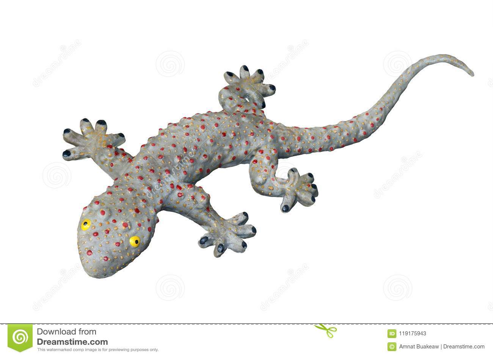 Geckoleksaken, den stora enorma geckoödlan, gecko isolerade vit bakgrund